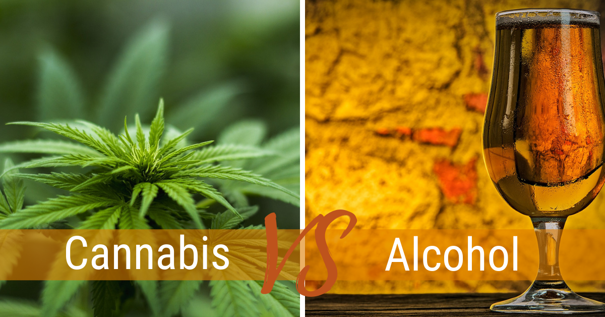 Cannabis vs alcohol: Which way will the market go, and grow?